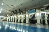 Printing Production Line: Cerutti 9+1