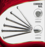 ISO Standard Q195 Q235 Steel Material Common Wire Nails