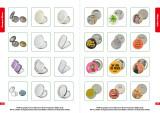 Compact Mirror~Button Badge