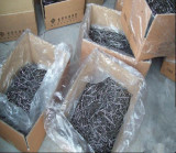 Polish Galvanized Common Nails/Round Wire Nails to Dubai Market