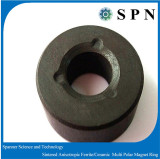 Magnet Ferrite anisotropic multipole rings sintered cores