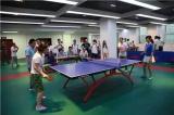 Signi Aluminum Table Tennis Match