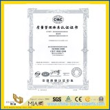ISO9001:2008 from YEYANG Stone Factory