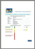 WCA - factory audit report