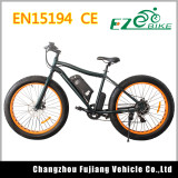 Popular High Power Mountain Electric Bicycle with Large Capacity Battery