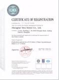 Tesu ISO9001 Certificate