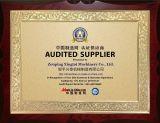 Audit report certificate