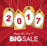 2017 big sale for playground equipment