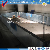 Hotel Acrylic Swimming Pool Project