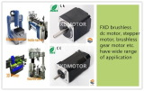 Wide range of FXD motors