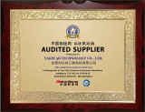 Audited Supplier by TUV SUD Certification