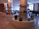 Show Room-2