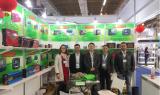 InterSolar South America 2017