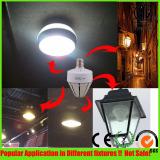 Led Stubby lamp application pics
