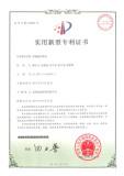 patent 16