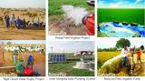 Living Water Transportation Industry