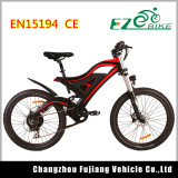 500W Super Power Electric Vehicle with Double Shoudler Front Fork