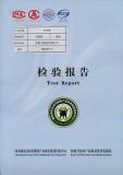 TEST REPORT-1