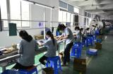 Plug-in-Line-Workshop