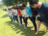 team work trainning