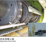 Agriculture Feed Chain
