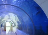 Acrylic Aquarium Tunnel for Park