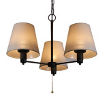 the hanging lamp for outdoor