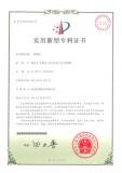 patent 13
