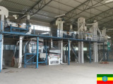 Kidney beans Cleaning Plant in Ethiopia
