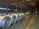 Prime hot dipped galvanized steel coil