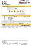 SGS-AUDIT-REPORT