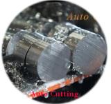 Auto Cutting