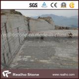 Realho Stone New G603 Quarry