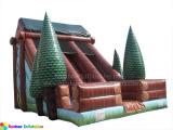 Wooden House Slide