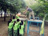 Team activities-2