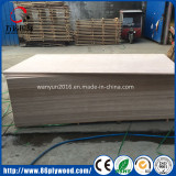 Okoume poplar plywood waiting for packing