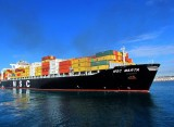 LCL Shipping Service to Europe Sea Freight Agent