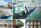 Revolutionary Lighting Supplier From Ningbo China