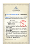 Domain Name Certification