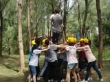 Company Activities-12