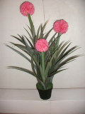 best selling pineapple flower