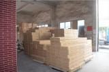 Our Factory Tour