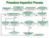Procedure Inspection Process