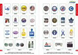 Lapel Pin (Printing~Stamping)