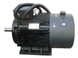 Specific screw compressor motor