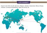 Our Main Market
