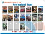 Profession Team