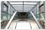 Bonding Stainless Steel Composite Board