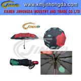 Fold Umbrella, Fashionable 2-Folding Umbrella (JHDF2007)