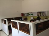 Office workstation-Staff workstation